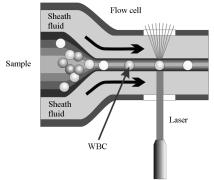 cytometr przepływowy w analizatorze BC5000vet